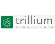Trillium Consultores